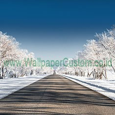 Wallpaper3D_124683175_1