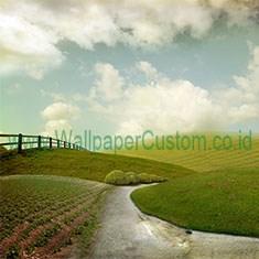 Wallpaper3D_62526343_1